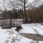 Forchtenstein-Winter-2015-02