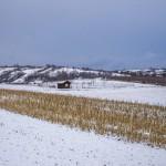 Forchtenstein-Winter-2015-04