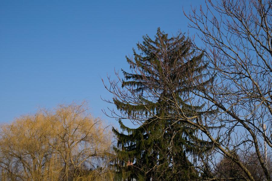 Aussichtswarte-Bad-Sauerbrunn-03