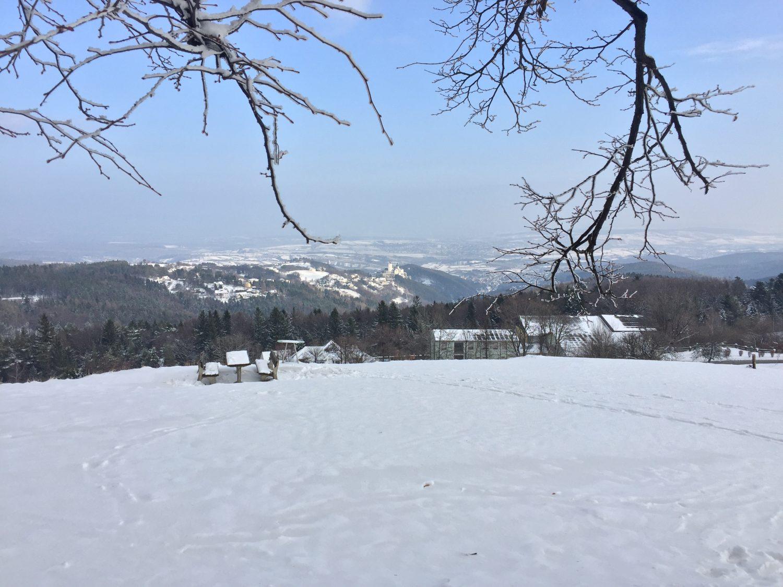 Sonntag-im-Schnee