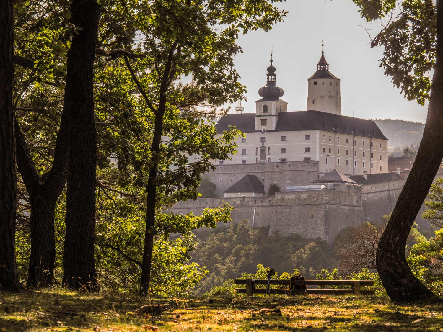 Hausberg-Forchtenstein-Web-18092020